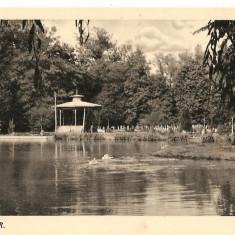CPI (B2979) KOLOZSVAR, CLUJ, EDITURA KARINGER, BUDAPESTA, NECIRCULATA, TIMBRE - Carte Postala Transilvania dupa 1918, Fotografie