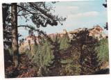 Carte postala(marca fixa)-RASNOV -Cetatea