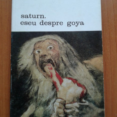 SATURN. ESEU DESPRE GOYA - Andre Malraux - Album Pictura