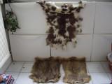 Blanuri din Mongolia(2xtorpogan si una de miel), Bej