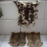 Blanuri din Mongolia(2xtorpogan si una de miel), Culoare: Bej