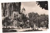 Carte postala(ilustrata)-RADAUTI-vedere din parc
