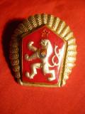 Insigna Militara de Sapca Cehoslovacia ,metal aurit si email ,h= 3,8 cm