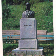 Carte postala(ilustrata)-NASAUD-Bustul lui Liviu Rebreanu