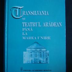 LIZICA MIHUT - TRANSILVANIA SI TEATRUL ARADEAN PANA LA MAREA UNIRE - Istorie