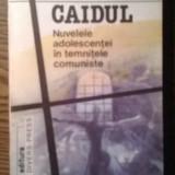 Carte - Mihai Radulescu - Caidul - Nuvelele adolescentei in temnitele comuniste - Nuvela