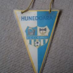 Fanion fotbal FC CORVINUL HUNEDOARA sport