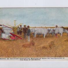 ROMANIA-CARTE POSTALA DE COLECTIE-CIRCULATA-SUA-1909-STARE BUNA