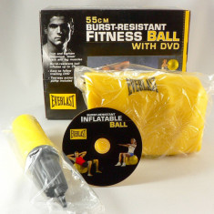 Everlast - minge fitness si aerobic - 55 cm - cu pompa si DVD -