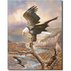 131.Reclama metalica vintage AMERICAN EAGLE