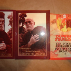 Jurnalul fericirii+Daruind vei dobandi+Din istoria isihasmului in ortodoxia romana-Dumitru Staniloae