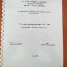 Atestat : Colaboratorii organizatiei (clasa a 12-a) - Certificare
