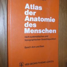ATLAS DER ANATOMIE DES MENSCHEN *Nach Systematischen und Topographischen Gesichtspunkten*Band I: Arm und Bein -- R. Bertolini, G. Leutert --1978, 332p