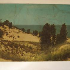 Vederi ( Carti postale) - INDIANA DUNES STATE PARK, America Centrala si de Sud, Necirculata, Fotografie