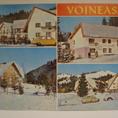 Vederi ( Carti postale ) - VOINEASA / VOINESITA