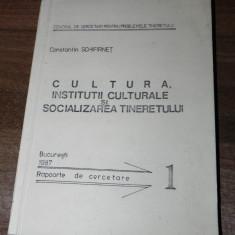 CONSTANTIN SCHIFIRNET - CULTURA. INSTITUTII CULTURALE  SI SOCIALIZAREA TINERETULUI. RAPOARTE DE CERCETARE