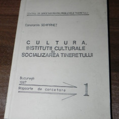 CONSTANTIN SCHIFIRNET - CULTURA. INSTITUTII CULTURALE SI SOCIALIZAREA TINERETULUI. RAPOARTE DE CERCETARE - Carte Sociologie