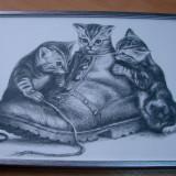 Tablou reprezentand trei pisici si un pantof, semnat si datat 1998