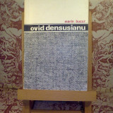 Marin Bucur - Ovid Densusianu - Roman