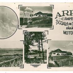 1411 - Prahova, CAMPINA, ARPA, fly school - old postcard, real PHOTO - used 1943, Circulata, Fotografie