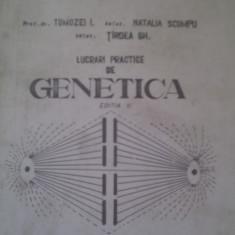 LUCRARI PRACTICE DE GENETICA DE PROF.DR.TOMOZEI I,INSTITUTUL AGRONOMIC ION IONESCU DE LA BRAD IASI 1980