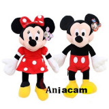 Mickey Mouse si Minie