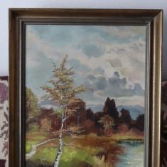Tablou in ulei pe panza - Peisaj de toamna - semnat H Kulu - 50 x 70 cm. - Pictor strain