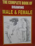 MANUAL DE DESEN AL CORPULUI UMAN ( lb engleza) THE COMPLETE BOOK OF DRAWING MALE & FEMALE de K. KUMAR, Alta editura