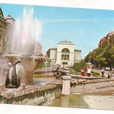 #carte postala(ilustrata)-TIMISOARA -vedere - Carte Postala Banat dupa 1918, Circulata, Printata
