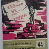 MIRCEA CARLOANTA - DE LA DROMIHETE INCOACE… - Roman, Anul publicarii: 1969