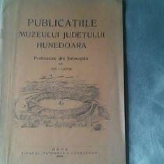 Publicatiile Muzeului Judetului Hunedoara-Protozoare de Soimostau-Dr.I.Lepsi - Roman