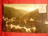 Ilustrata TCV -Sinaia Stada Postei ,stamp. de Esperanto+stamp. liniara 1919 ,Text esperanto