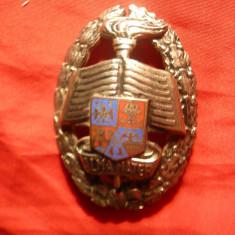Insigna Academia Militara, metal argintat, h= 6 cm