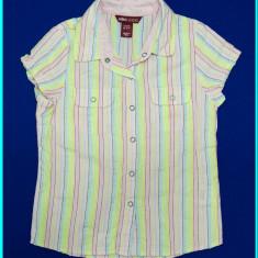 DE FIRMA _ Bluza / bluzita, bumbac creponat, H&M _ fetite | 5 - 6 ani | 116 cm, Marime: Alta, Culoare: Multicolor, Fete