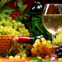Vin natural sec si demisec direct de la producator 4 lei/litru, Romania, Alb
