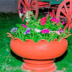 Ghivece decorative de flori pentru gradina - Ghiveci