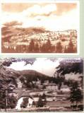 LOT carti postale- Preleal, Ambele, Fotografie, Romania de la 1950