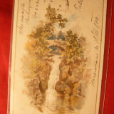 Felicitare-Litografie, circ. de la Boita ( jud. Sibiu) la 1899