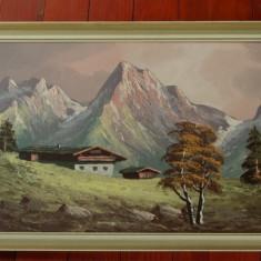 Tablou cu rama din lemn - pictura - peisaj montan - semnat