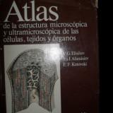 Atlas de la estructura microscópica y ultramicroscópica de las células, tejidos y órganos