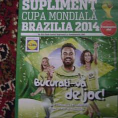 Ghidul campionatului mondial 2014