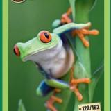 [RAR] Cartonase Mega Image Minunile Planetei - Nr.122 - Cartonas de colectie