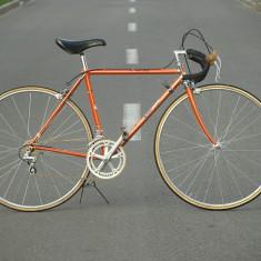 Edi Strobl Special - cursiera rara, 28 inch