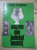 MUZEE DIN JUDETUL NEAMT MARCEL DRAGOTESCU carte arta muzeu cultura istorie hobby, Alta editura