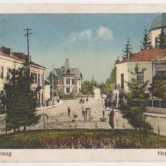 Campulung Muscel, Piata Regala, animata, caruta, 1920