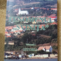 Svinita fenomenul vol 1 judetul mehedinti carte ilustrata monografie istorie - Carte Monografie