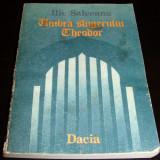UMBRA SLUGERULUI THEODOR - Ilie Salceanu - Roman, Anul publicarii: 1988