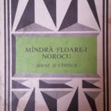 MANDRA FLOARE-I NOROCU - DOINE SI CANTECE