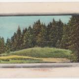 Poiana Tigancii (Varatec,Neamt),circulata la Iasi,1912