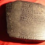 Cutie veche pt. 6 lingurite-imitatie piele de sarpe, inc. sec.XX